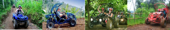 bali quad and buggy tour by bali activities
