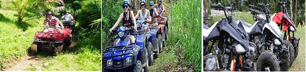 BALI COMBINATION TOURS