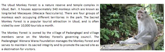 Bali local tour guide who organize elephant tours