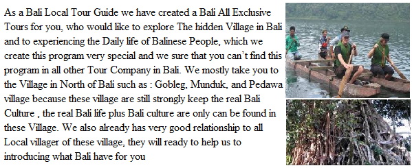 bali local tour guide, bali local driver, local guide in bali, bali private driver