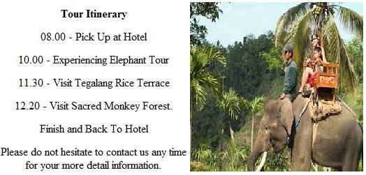 bali full day tour, bali tour package, bali half day tours, bali tour package, bali tour guide