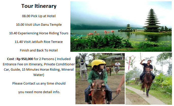 Horse riding tour in bali, Bali horse riding, horse riding bali tour,