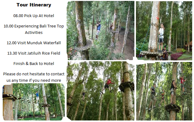 bali tree top adventure tour, bali local guide, bali local driver